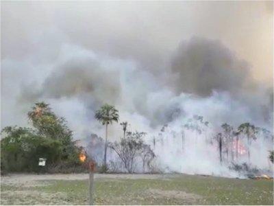 60 personas atendidas por incendio en el Pantanal paraguayo