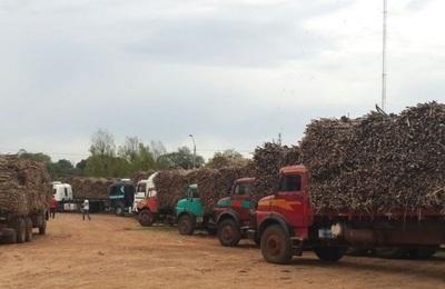 Sindicato exige que se esclarezca rumores del quiebre de Azucarera Guarambaré