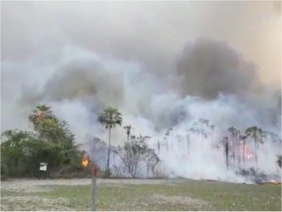 Bahía Negra ya no está en riesgo por incendio forestal