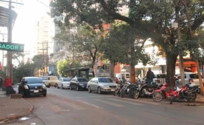 Piden no estacionar sobre Adrián Jara este lunes por poda de árboles