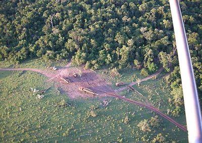 Presentan estrategias para mitigar cambio climático en Paraguay