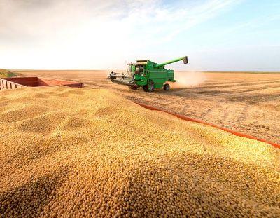 Bajante del río retrasa exportaciones de soja y complica panorama