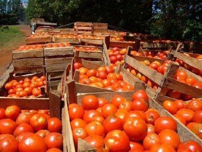 Confían que control anticontrabando mejoren comercialización interna de tomate
