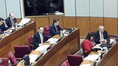 Castiglioni retoma su banca en el Senado