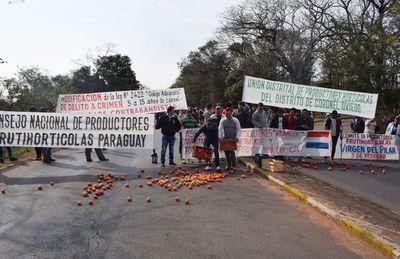 Ministro de Agricultura descarta subsidio a tomateros