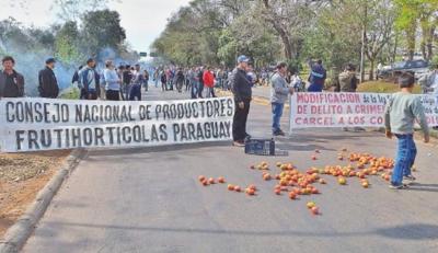 Unos 1.000 productores de tomate se movilizarán en Asunción