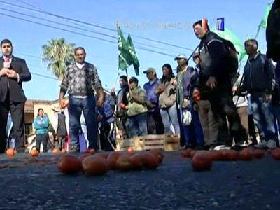 Continúan reclamos de tomateros afectados por el contrabando