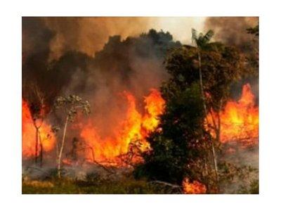 Amazonas arde en llamas y Bolsonaro insinúa que fue provocado