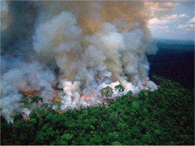 ¿Cómo nos afectará el incendio en el Amazonas?