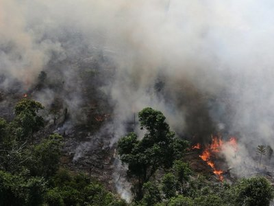 La Amazonia  se quema y Bolsonaro insinúa que la culpa es de las ONG