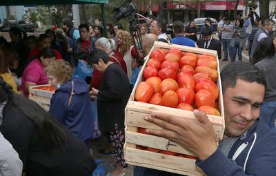 Productores de tomate venden de manera masiva en ferias impulsadas por el MAG