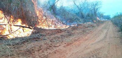 """""""Instituciones en alerta"""" por incendios forestales, según Roa"""