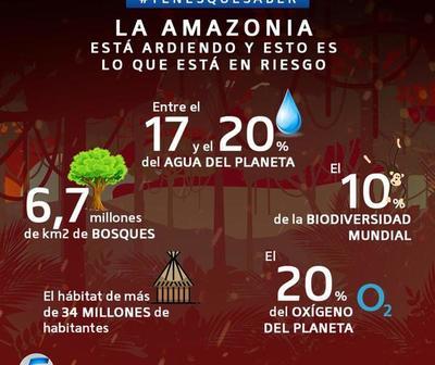 La Amazonia está ardiendo ¿Qué es lo que está en riesgo?