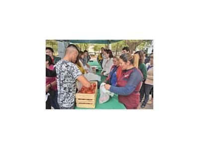 Feria de tomates fue exitosa con 12.000 kg vendidos