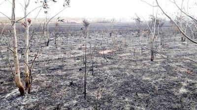 Tras una semana de incendios, planean gran operativo para el Chaco