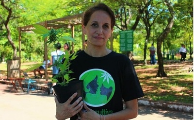 Presentan proyecto de despenalización del cannabis para uso medicinal