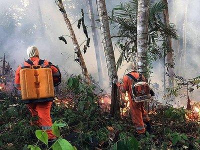 Acuerdo UE-Mercosur, contra las cuerdas por incendio en la Amazonia