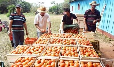 Invitan a feria de productos frutihortícolas