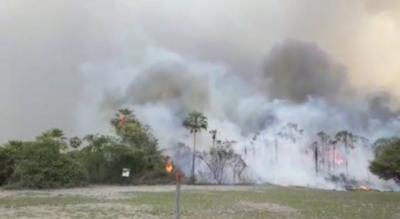 ATP emite un comunicado sobre incendios en el Amazonas y en el Chaco Paraguayo