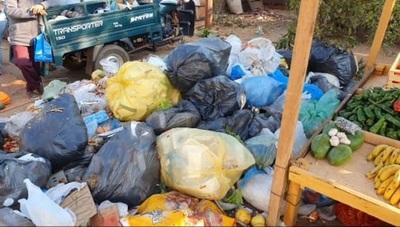 Entra en debate la posibilidad de tercerizar la recolección de basuras