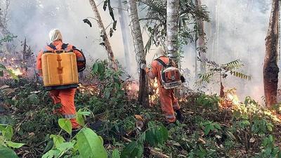 """El G-7 dispuesto a ayudar en el combate a los incendios en el amazonas con """"medios técnicos y financieros"""""""