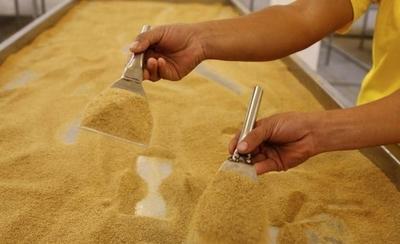 HOY / Con arancel cero, Taiwán   importará desde Paraguay  60.000 tn de azúcar orgánica