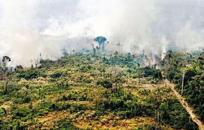 Fuego no se detiene en la Amazonia pese al despliegue para combatirlo