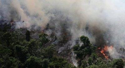 Gobierno de Bolsonaro rechazó la ayuda del G7 para combatir los incendios en el Amazonas