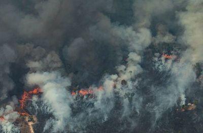 Fuego en la Amazonía, preocupación ambiental y tensiones diplomáticas