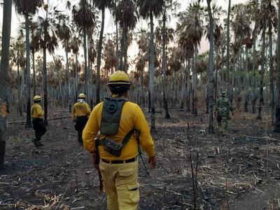 CAF hará donación de emergencia para Paraguay y otros países afectados por incendios