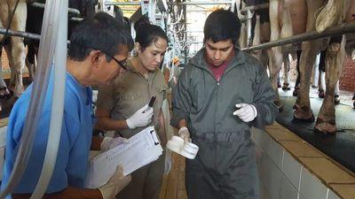 Profesionales con plan para la ganadería y  salud pública