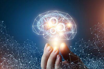 Buscan expandir conocimientos sobre neurociencia