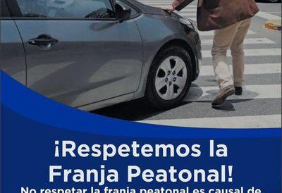 """""""Respetemos la franja peatonal"""", campaña vial  inicia en CDE"""