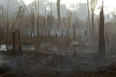 "Brasil carga contra ""ideas raras"" de internacionalizar la Amazonia"