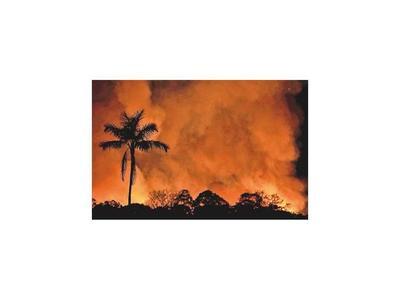 Control paulatino de los incendios da un respiro a Bolsonaro