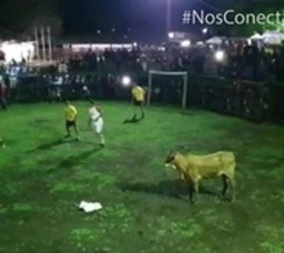 Fútboi: El deporte furor que se juega con una vaca