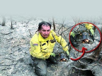 Rescatan animales expuestos al fuego en zona de Pantanal