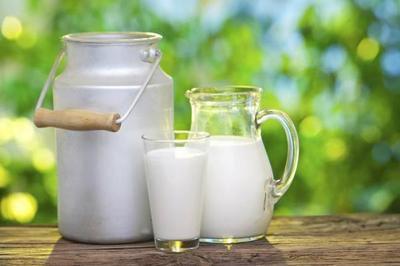 Exportación de leche en polvo muestra repunte