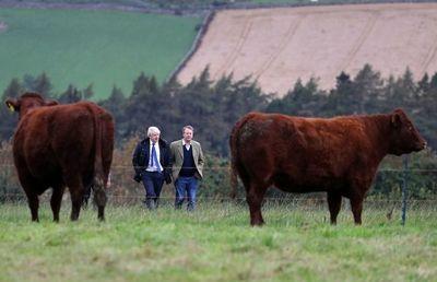 Lores aprueban ley contra un brexit sin acuerdo