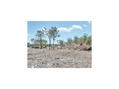 Aplican multa por desmontar casi 3.000 ha. en el Chaco