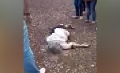 Mujer queda grave al ser embestida por vehículo sobre la Ruta PY 02