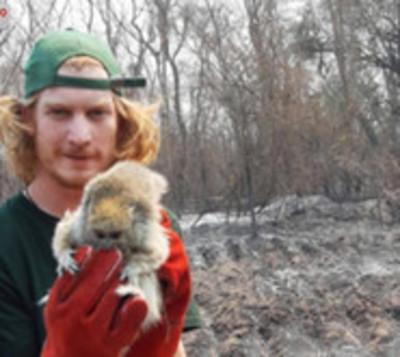 Jóvenes se organizan para salvar animales