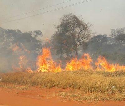 Fuego se torna incontrolable en San Pedro