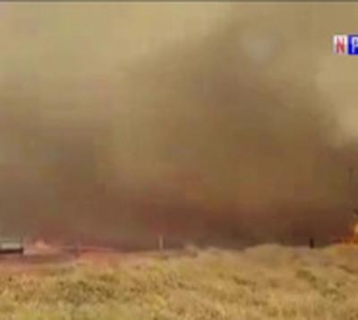 Infierno en San Pedro: Incendio forestal arrasa con ganado