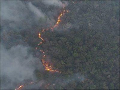 Se reportan más de 20 áreas de incendios forestales en Paraguay