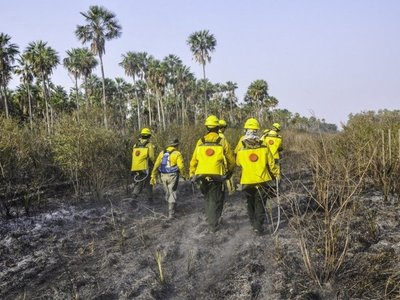 Ejecutivo promulga ley de emergencia ambiental en el Chaco
