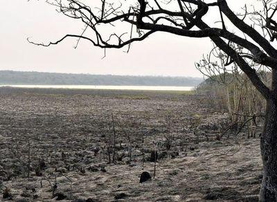 Incendio en la reserva Tatí Yupí de Alto Paraná