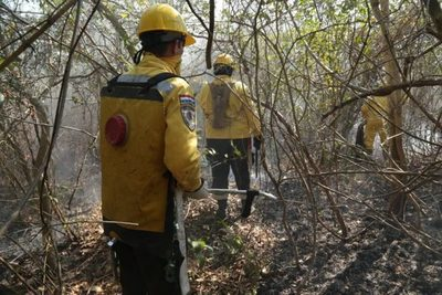 Ejecutivo declara emergencia ambiental en el Chaco