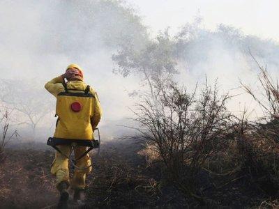Fuertes vientos y el calor reavivan incendios forestales en el Chaco