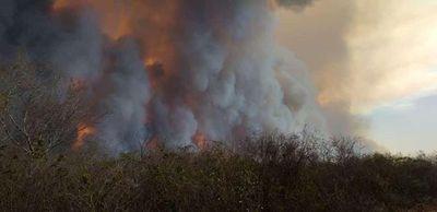 Se reaviva el fuego en el Chaco y focos de incendio ascienden a 168